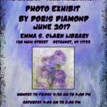 The River of Your Imagination-Photo Exhibit by Doris Diamond